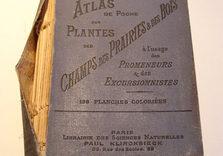 Atlas des plantes. AVANT