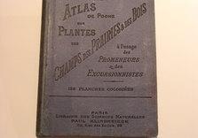 Atlas des plantes. APRES